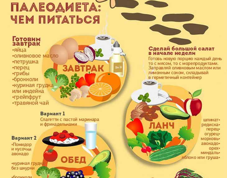 Палео диета — что это? список продуктов —что можно есть?