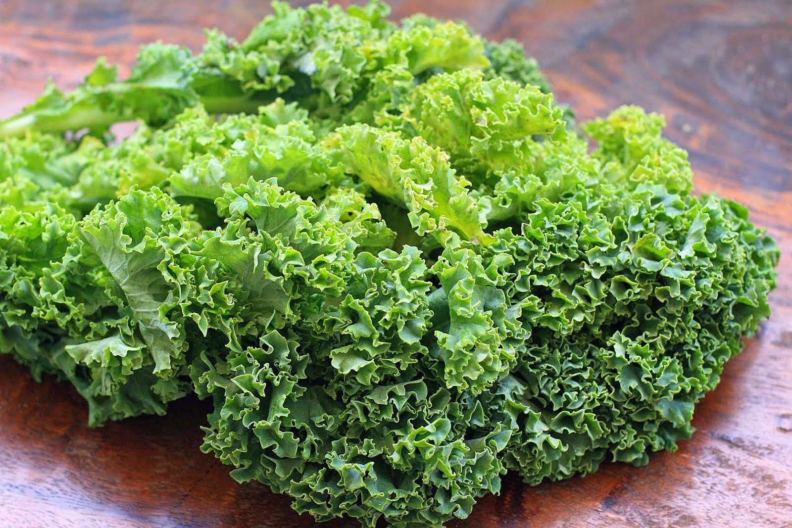 Капуста кейл: польза и вред, химический состав, калорийность, противопоказания