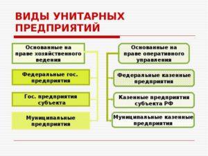 Унитарное предприятие — определение, назначение, классификация