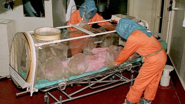 Сибирская язва: возбудитель и его патогенность, эпидемиология, клиника инфекции, диагностика, терапия