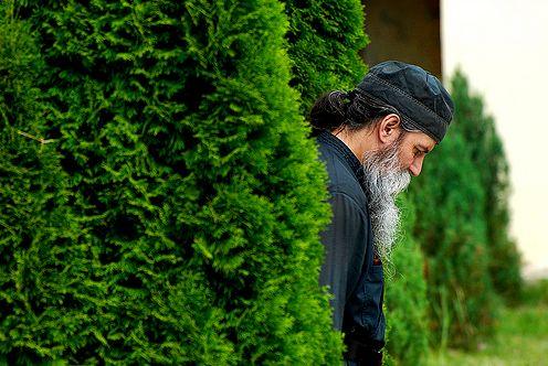 Кротость и смирение: значение слов в православии, как научиться смирению и терпению