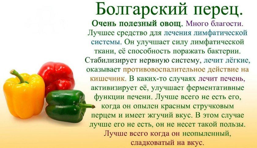Кайенский перец: полезные свойства, вред, разница с красным чили, лечение молотым, в кулинарии, для похудения
