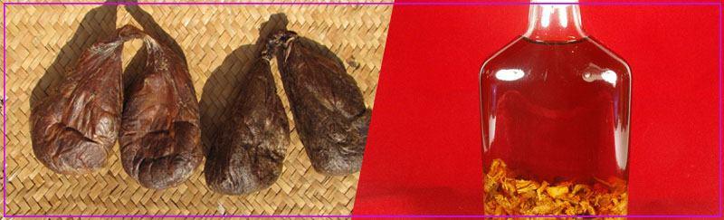 Бобровая струя: от каких болезней, показания к применению, лечебные свойства струи бобра, отзывы