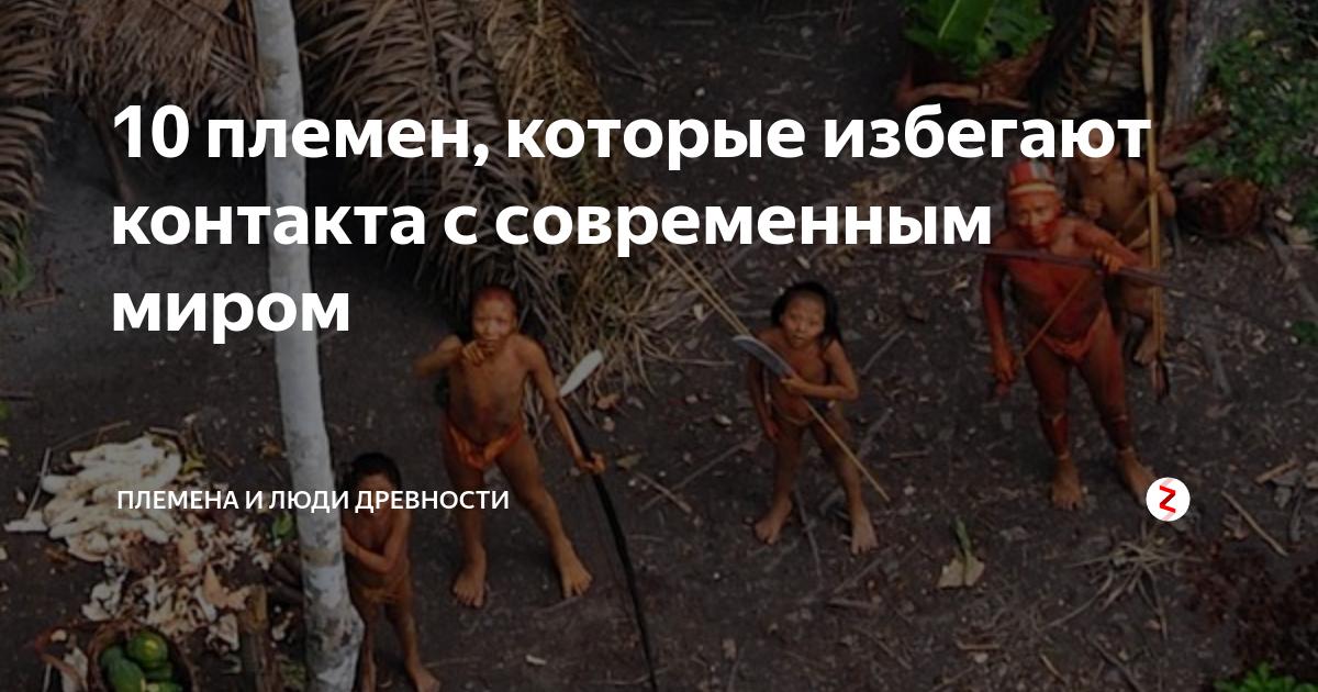 Что такое племя? древние и современные племена
