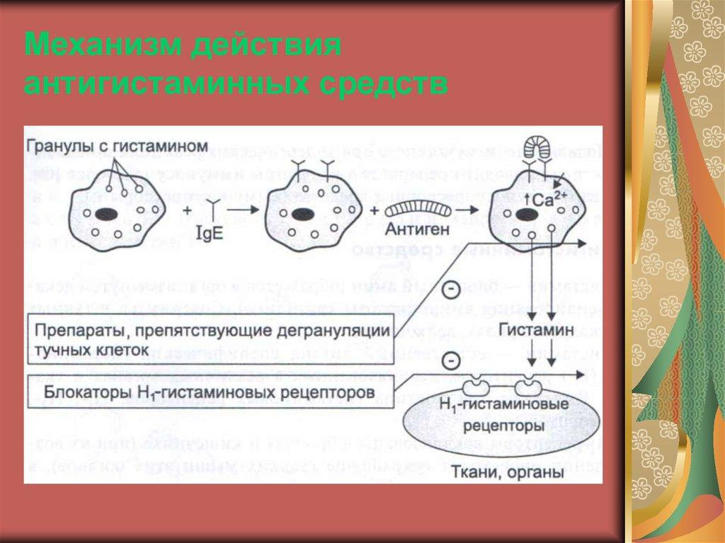 Гистамин — википедия. что такое гистамин