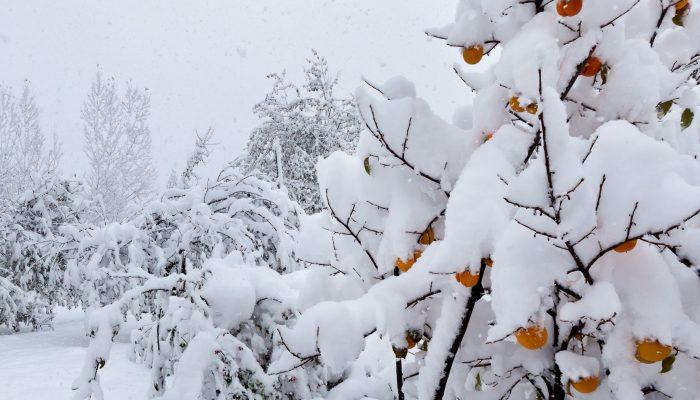 Как образуется снег? - other
