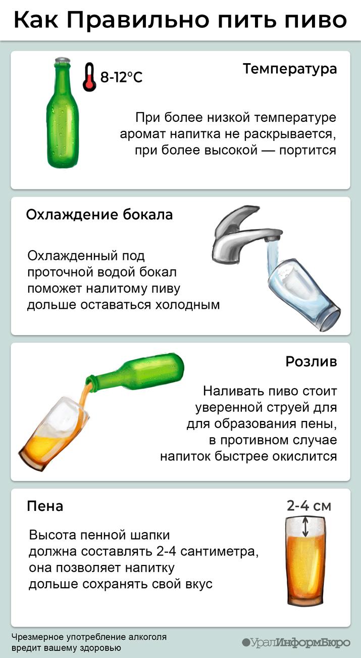 Пиво — википедия. что такое пиво
