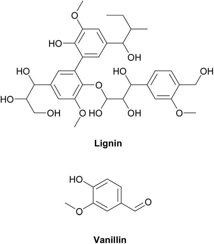 Лигнин: что такое лигнин, происхождение, получение, свойства, применения