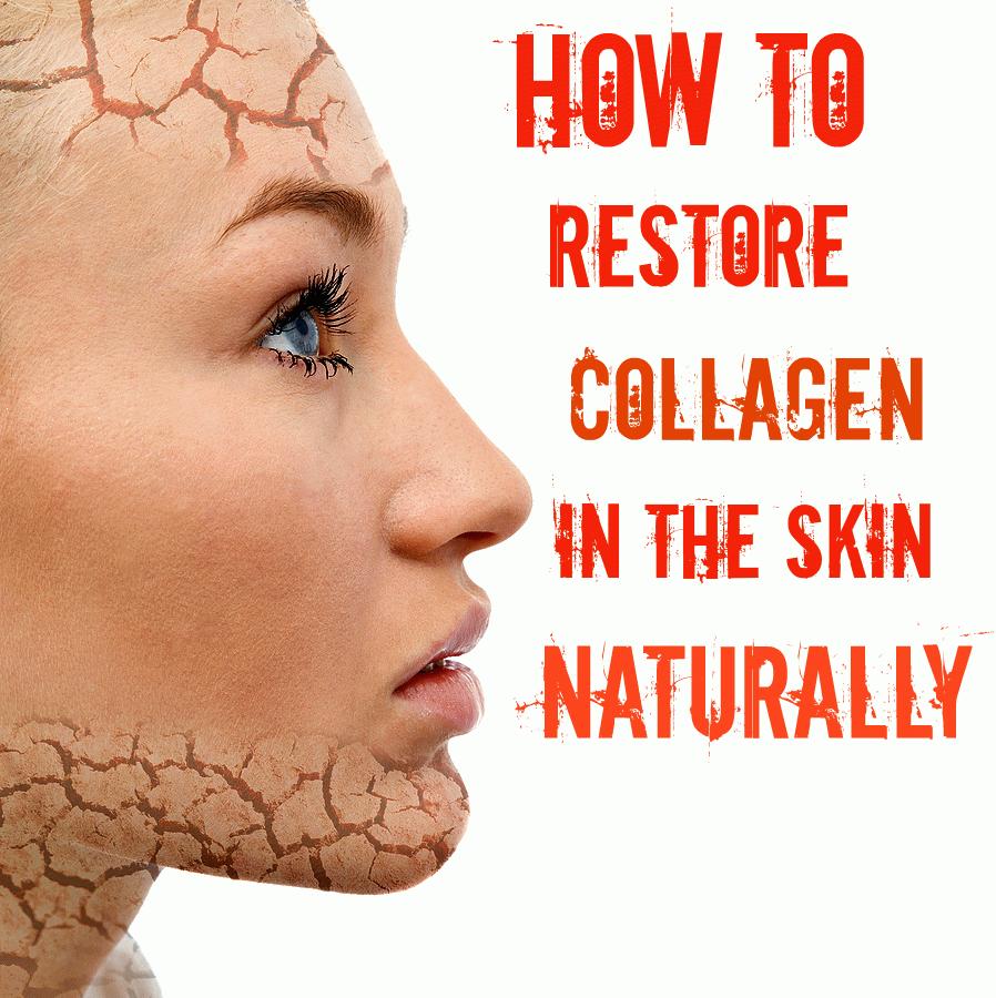 Коллаген: что это такое, чем полезен для кожи, костей и как правильно принимать