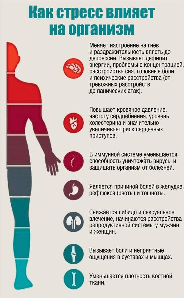 Влияние стресса на иммунитет и здоровье человека
