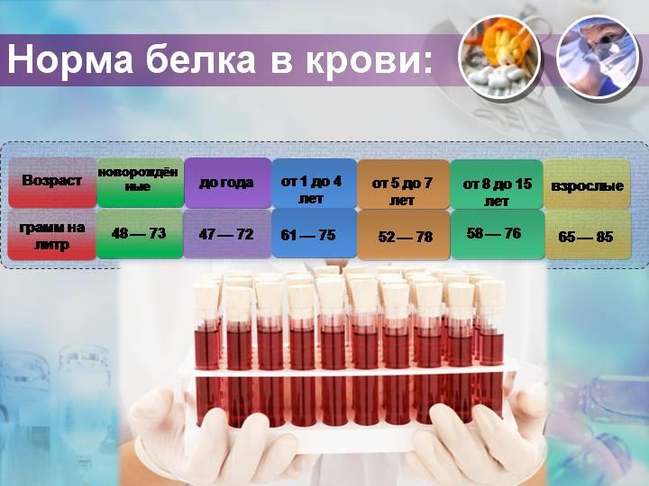 Общий белок в крови: что это такое, норма у женщин и мужчин