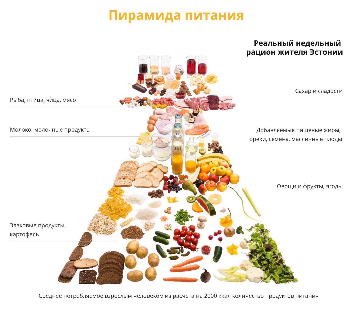 Рациональное питание – что это такое, польза и проблемы, принципы и нормы, пирамида