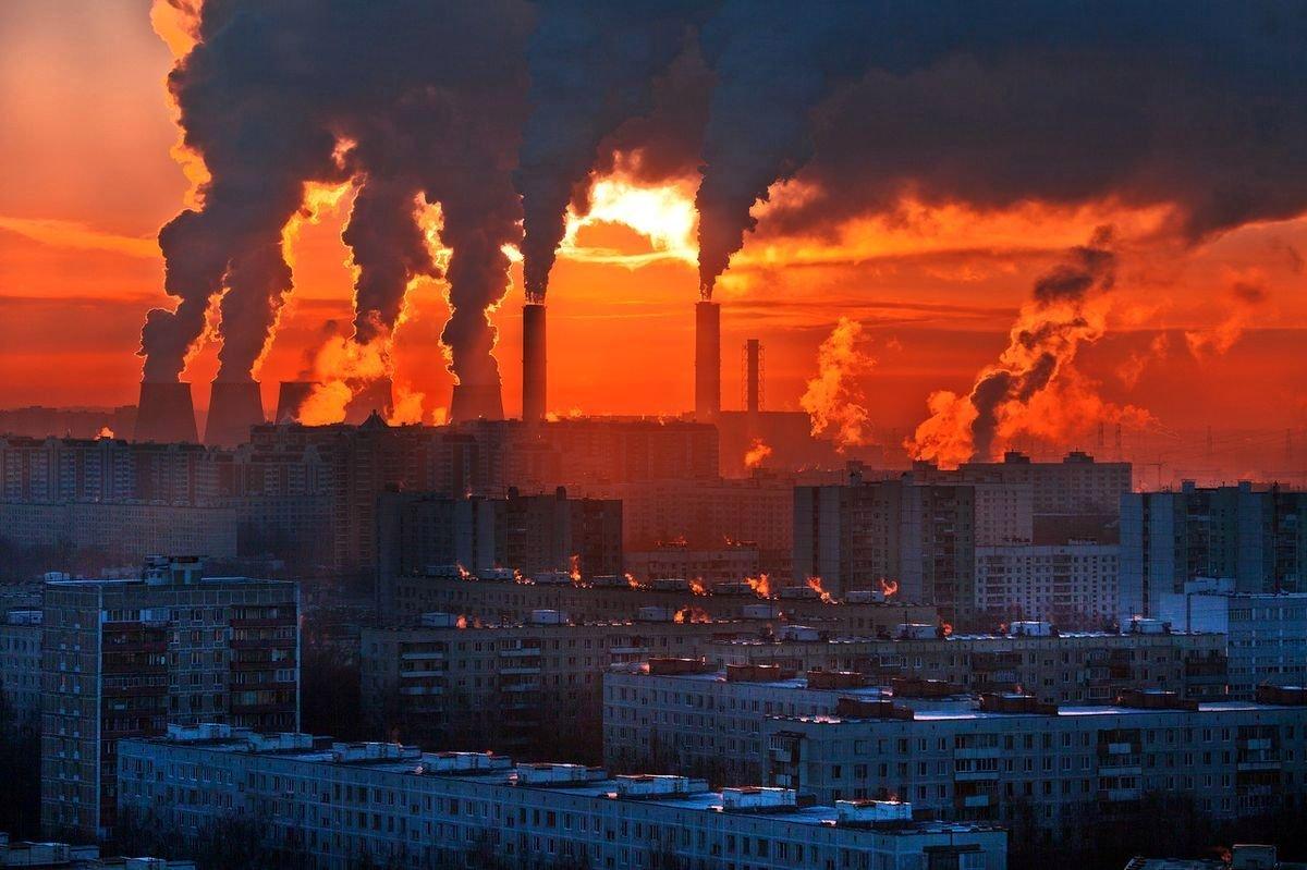 Что такое экология