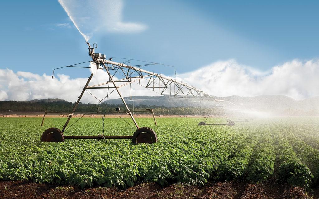 Орошаемые земли: понятие и особенности обработки почвы :: businessman.ru