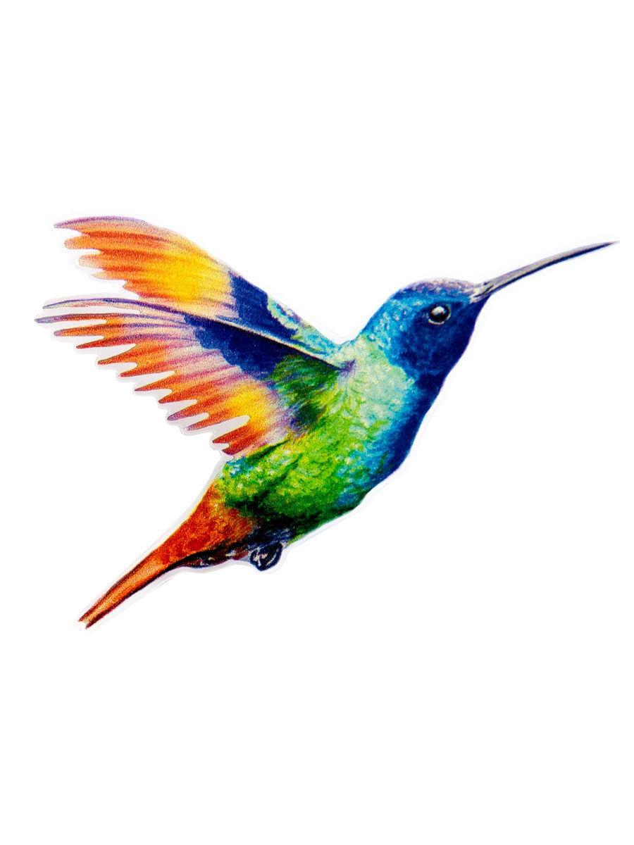 Колибри — википедия. что такое колибри