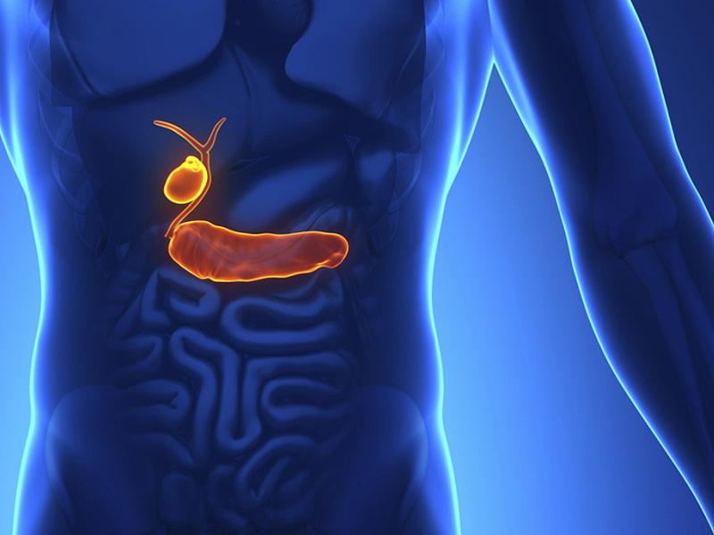 Желчь медицинская: от чего помогает и чем полезна