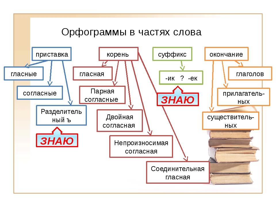 Русский язык: орфограммы. все орфограммы русского языка