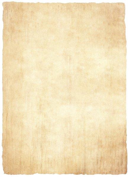 Значение слова «папирус»
