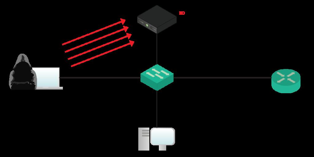 Что такое dhcp и как он работает?