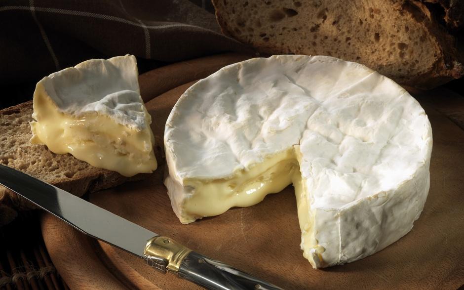 Сыр камамбер: состав, польза и вред, производство сыра камамбер