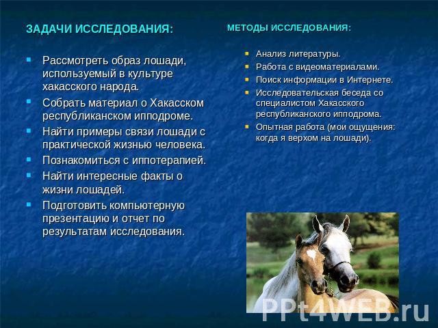 Центральный московский ипподром — википедия. что такое центральный московский ипподром