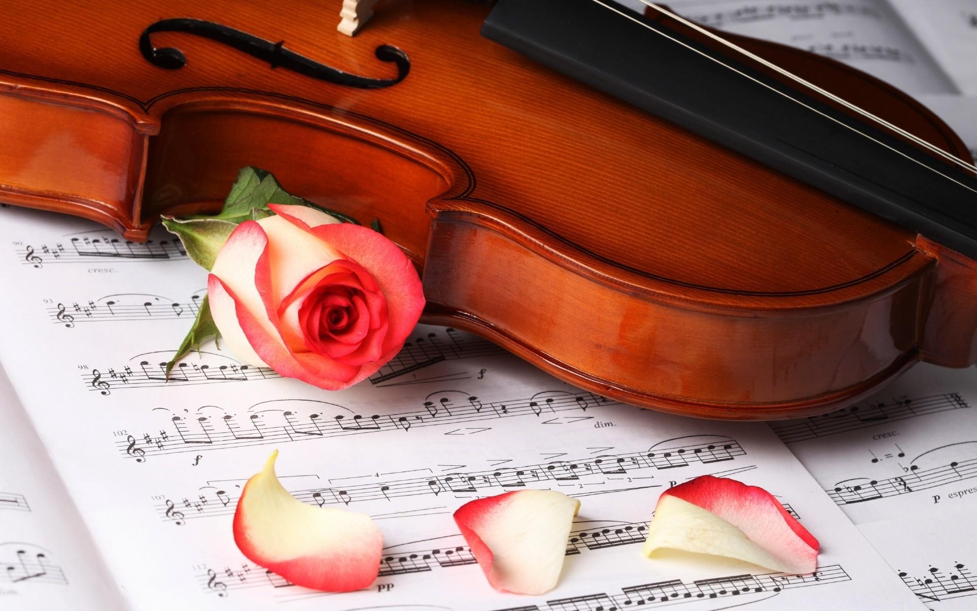 Classic music (классическая музыка)   культурный обозреватель