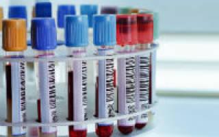 Норма трансаминазы в анализе крови что это такое