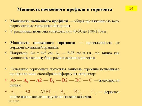 Морфология почв | энциклопедия кругосвет