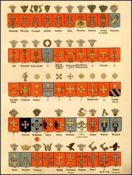 Материалы о шляхте и дворянстве | энциклопедикс