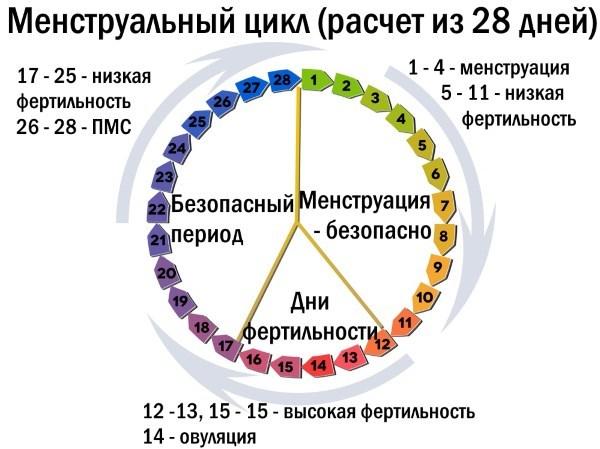 Менструальный цикл, фазы менструального цикла, нарушение, сбой, восстановление менструального цикла