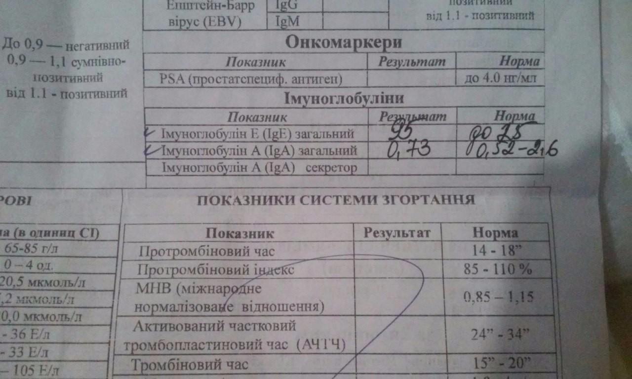 Анализ крови на иммуноглобулин е (ige): норма, расшифровка