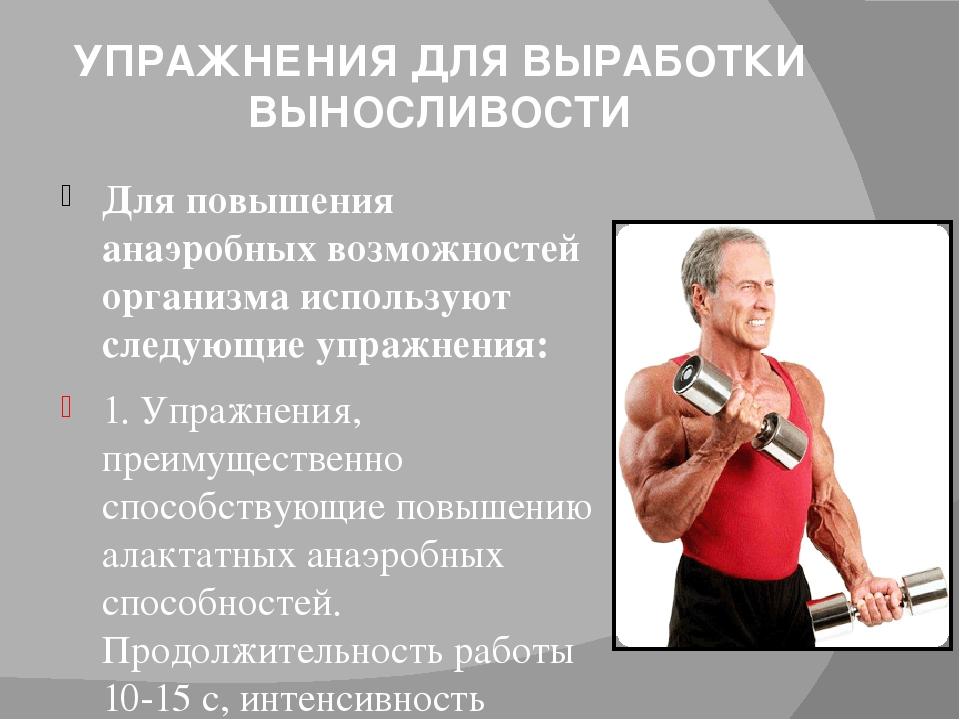 Выносливость (виды и тесты для оценки) — sportwiki энциклопедия