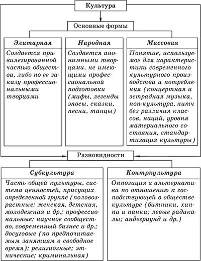 Разновидности культуры: понятие элитарной или массовой культуры, какие ее основные формы или виды и план об этом по обществознанию