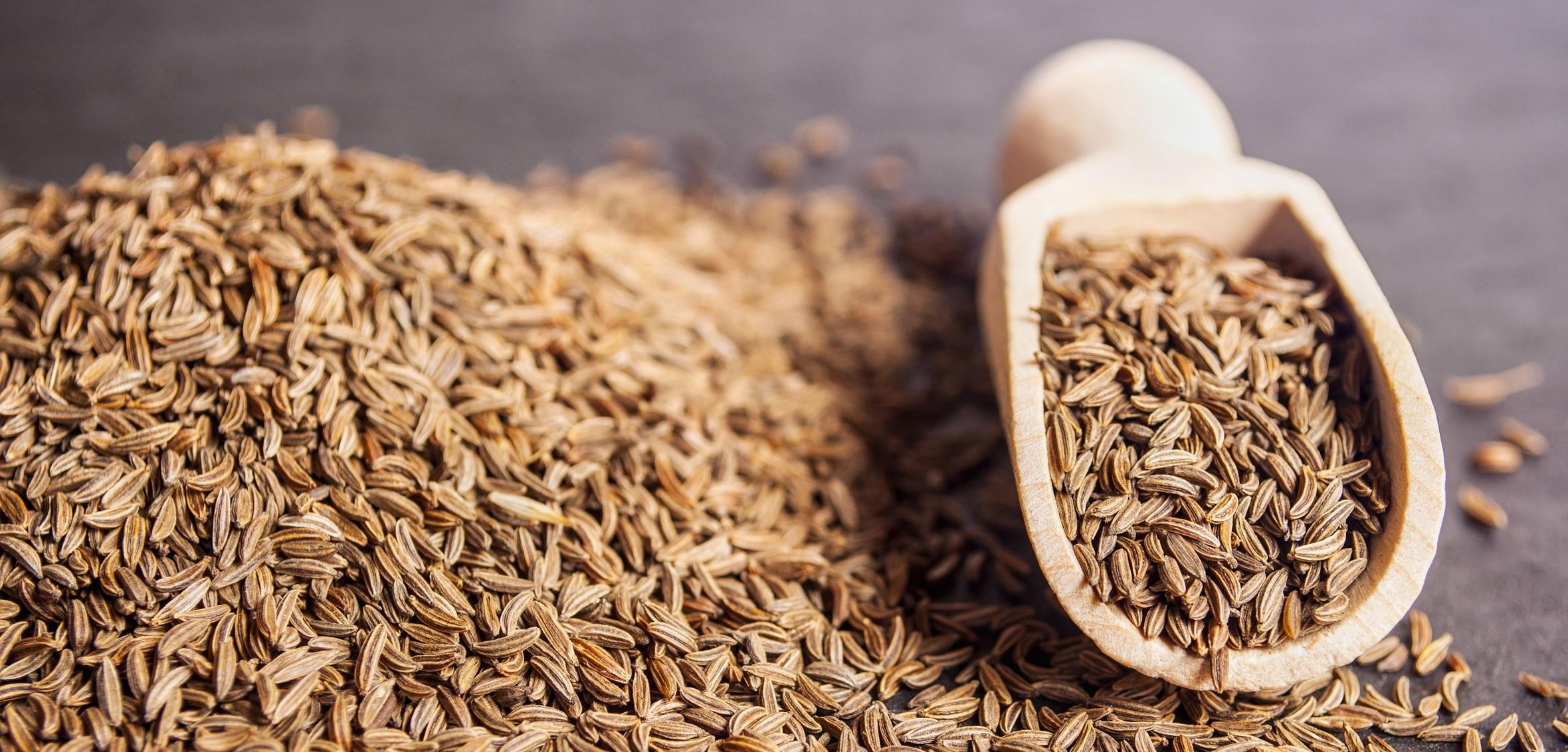 Приправа зира: полезные свойства и противопоказания, химический состав, применение для похудения, для волос, от паразитов, в кулинарии, отзывы