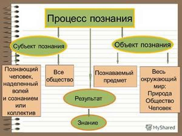 Изучаем значение слов: субъект и объект деятельности – что это такое