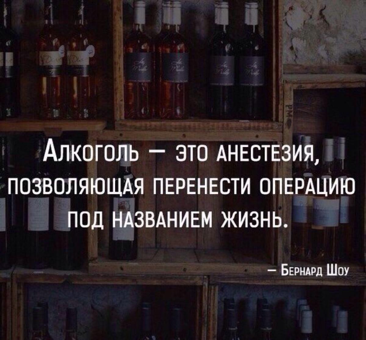 Лучшие цитаты про алкоголь: 49 афоризмов, которые стоит запомнить