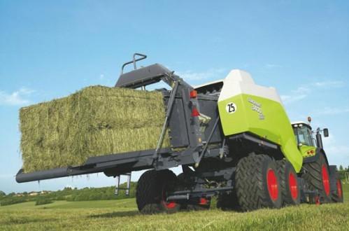 Как выбрать хорошее сено. подходящее сено для каждого животного, свойства и состав.