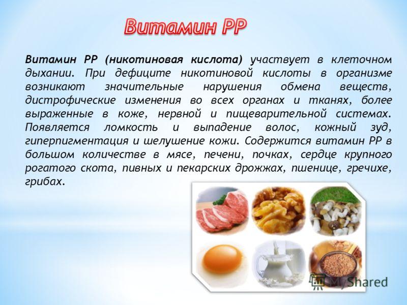 Ниацин — для чего нужен витамин b3 или pp?