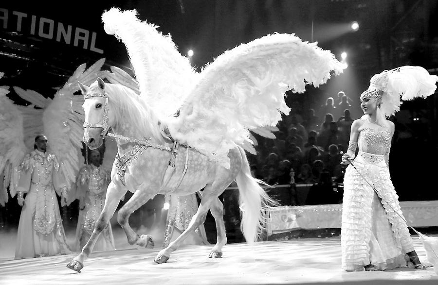 Цирк — википедия. что такое цирк