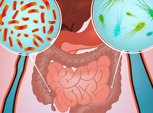 Тенезмы, физиология мочевого пузыря, причины, лечение