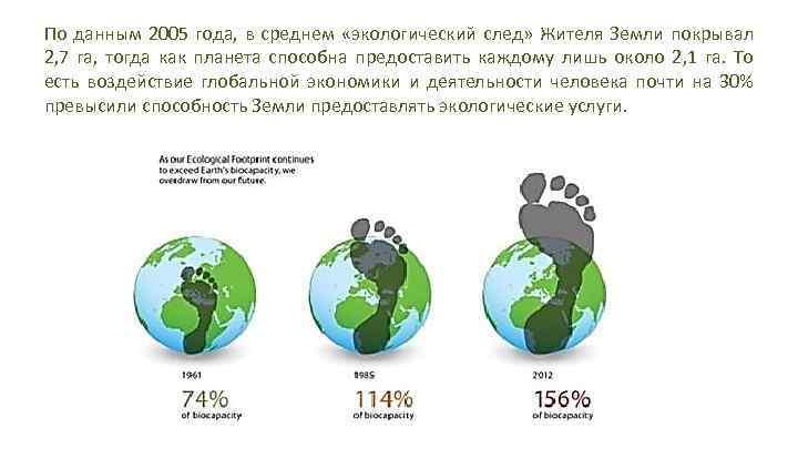 Как рассчитать экологический след