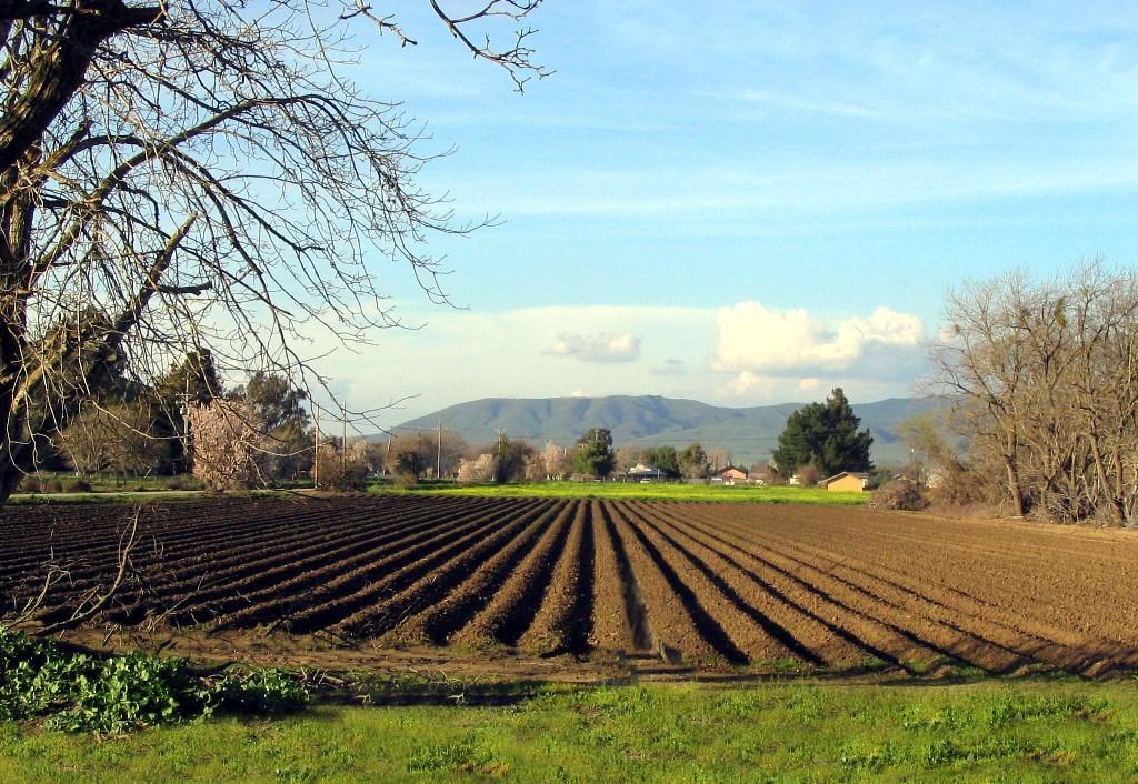 Орошение - это что такое в сельском хозяйстве?