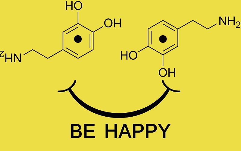 Что такое дофамин простыми словами: гормон допамин инструкция по применению