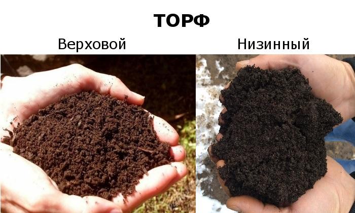 Торф как удобрение: кислый верховой торф - что это такое, как образуется, польза и вред для огорода