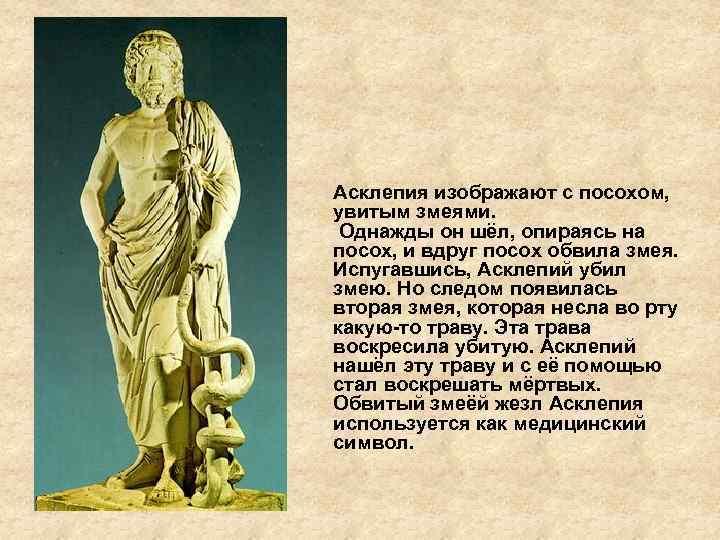 История происхождения слова панацея