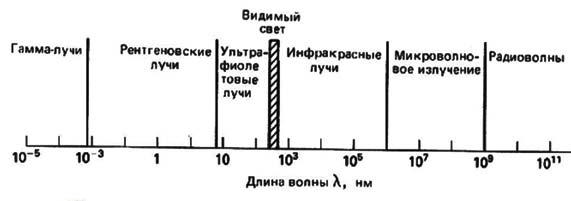 Механические волны, их виды и скорость распространения.