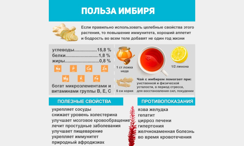 Какие полезные свойства имеет имбирь - все об имбире