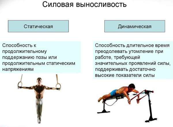 Глава 4. физиологические основы выносливости определение понятия
