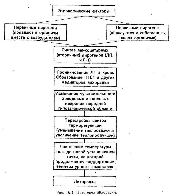 Кессонная болезнь - симптомы и лечение, фото и видео