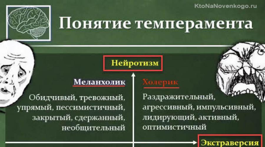 Холерики: кто такие, основные особенности темперамента и характера, как с ними ужиться - все курсы онлайн